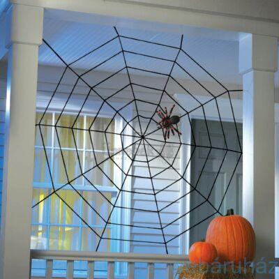 Fekete Pókháló Pókkal