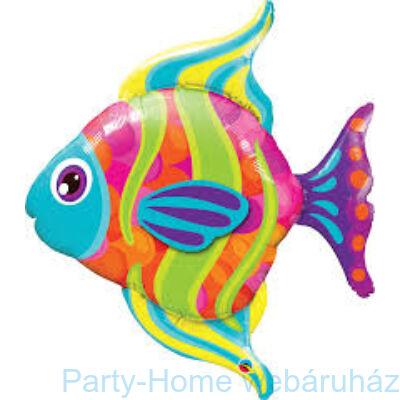 43 inch-es Szines Halacska - Fashionable Fish Super Shape Fólia Lufi