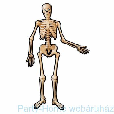 Karton Csontváz Dekoráció Halloweenre - 135 cm-es